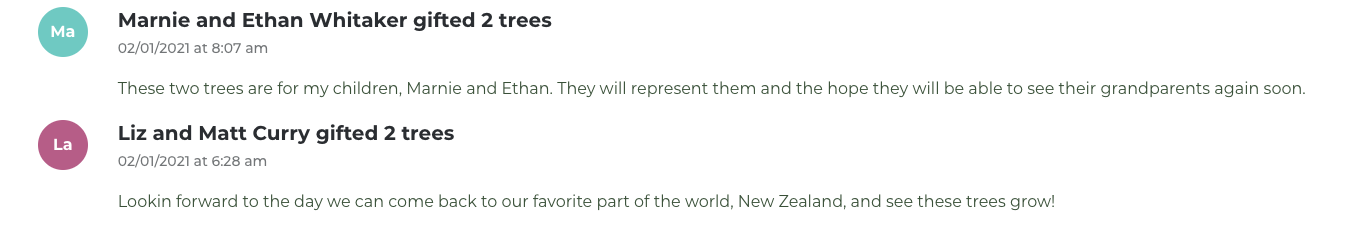 Tourism New Zealand wants people from across the globe to share their misfortunes and disappointments of 2020 online, For every disappointment shared, people are then invited to put a positive spin on their situation by donating a tree in the Forest of Hope.